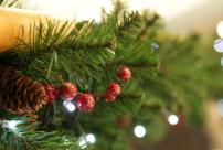 cj-Advent-Lounge-Party-Event-Weihnachtsmarkt-Duisburg-Harders-Online-Shop-Store-Fashion-Designer-Mode-Damen-Herren-Men-Women-Jades-Soeren-Volls-Pool-Mientus-Fall-Winter-H